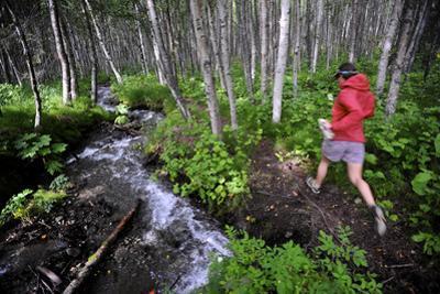 Woman Jogging Through a Birch Forest Alongside a Small Stream, Alaska