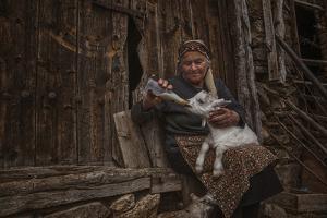 Substitute Mother by Desislava Ignatova