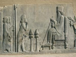 Relief of the Enthronement of Darius, Persepolis, Unesco World Heritage Site, Iran, Middle East by Desmond Harney