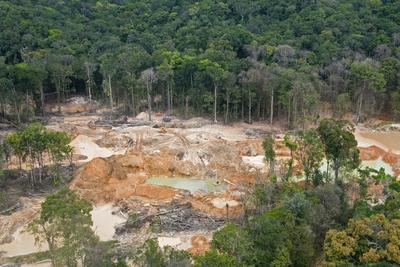 https://imgc.allpostersimages.com/img/posters/destruction-of-rainforest-caused-by-gold-mining-guyana-south-america_u-L-PWFSD00.jpg?p=0