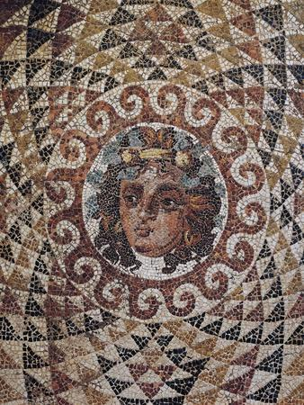 https://imgc.allpostersimages.com/img/posters/detail-of-geometric-mosaic-with-dionysus-at-centre-discovered-in-roman-villa-in-corinth-greece_u-L-POPO8U0.jpg?artPerspective=n