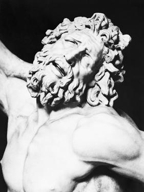 Detail of the Head of Laocoon from the Laocoon Group