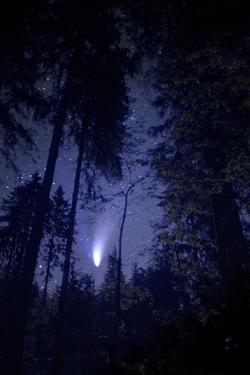 Comet Hale-Bopp by Detlev Van Ravenswaay