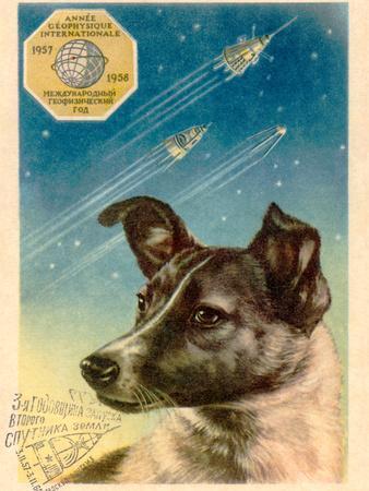Laika the Space Dog Postcard