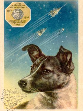Laika the Space Dog Postcard by Detlev Van Ravenswaay