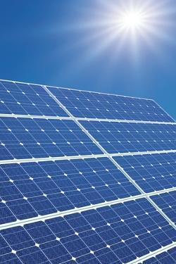 Solar Panels In the Sun by Detlev Van Ravenswaay