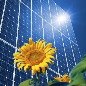 Solar Power, Conceptual Artwork by Detlev Van Ravenswaay