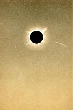 Total Solar Eclipse of 1882 And Comet by Detlev Van Ravenswaay