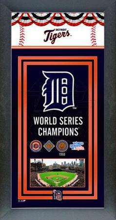 Detroit Tigers Framed Championship Banner