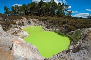 Devil's Bath Crater Wai-O-Tapu