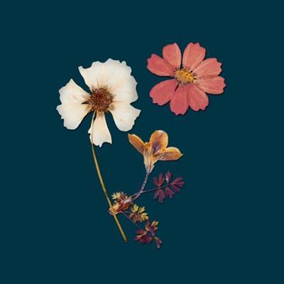 Garden Keepsake 1 by Devon Ross