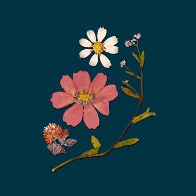Garden Keepsake 2 by Devon Ross