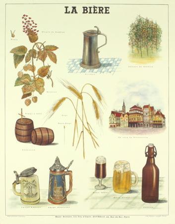 La Biere by Deyrolle