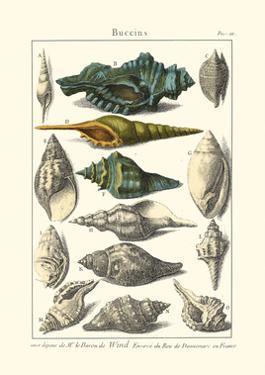 Seaside Treasures I by Dezallier