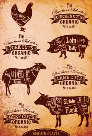 Diagram Of Cut Carcasses Chicken, Pig, Cow, Lamb