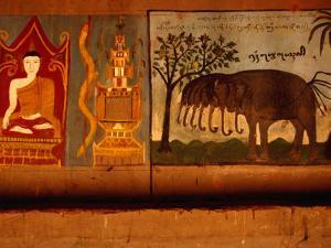 Mural in Buddhist Monastery at Xishuangbanna, Yunnan, China by Diana Mayfield