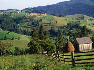 Rural Countryside, Sacele, Brasov, Romania, by Diana Mayfield