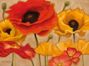 Poppies by Diane Hoeptner