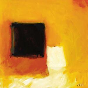 L'obscurité et la lumière by Diane Lambin