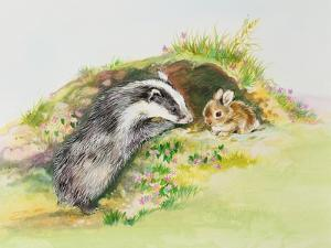 Badger and a Rabbit by Diane Matthes