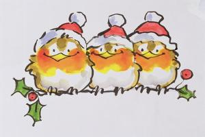 Christmas Robins by Diane Matthes