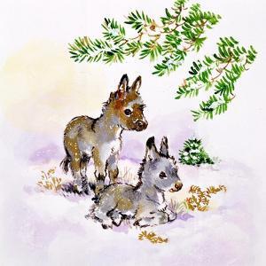 Donkeys by Diane Matthes