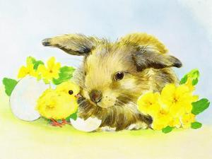Easter Bunny with Primrose and Chick by Diane Matthes