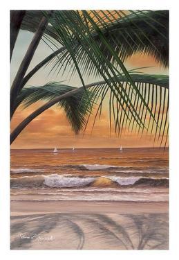 Paradiso Sunset by Diane Romanello