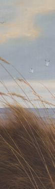 Sailboat Breezeway Panel I by Diane Romanello