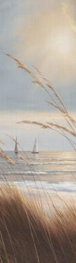 Sailboat Breezeway Panel II by Diane Romanello