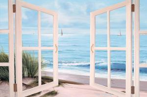 Sandpiper Beach Door by Diane Romanello