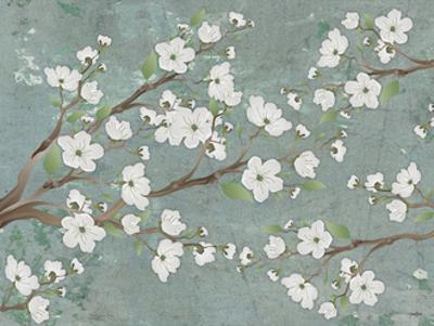 Cherry Blossoms Gray by Diane Stimson