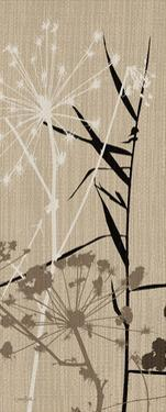 Grasses 1 Brown by Diane Stimson