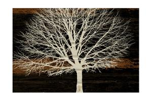 Night Tree by Diane Stimson