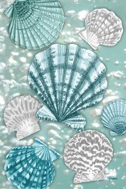 Scallop Bubbles by Diane Stimson