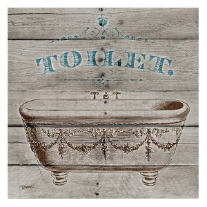 Toilet by Diane Stimson