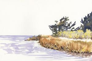 Solitary Coastline III by Dianne Miller