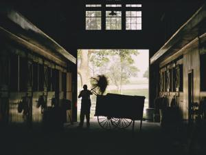 Cleaning Horse Stalls in Kentucky by Dick Durrance