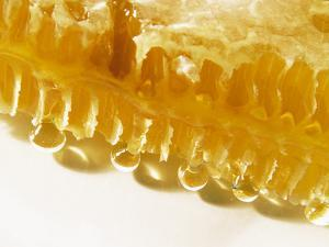 Close-Up of a Honeycomb by Dieter Heinemann