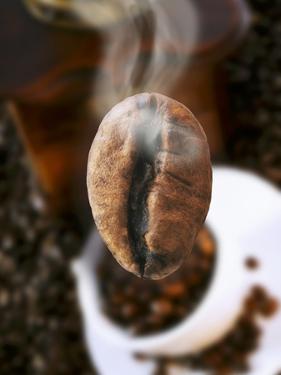 Roasted Coffee Bean (Steaming) by Dieter Heinemann