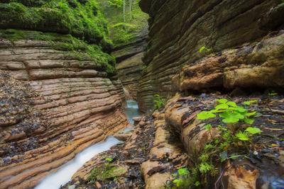 Rock Formation in the Tauglbach, Waterfall, Salzburg, Austria