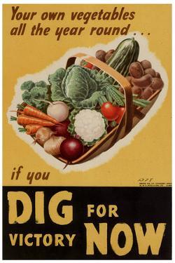 Dig for Victory WWII War Propaganda Plastic Sign