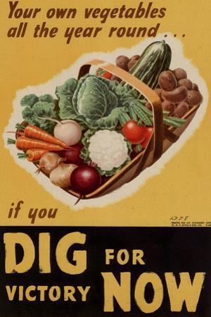 Dig for Victory - WWII War Propaganda