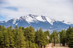 Landscape with Humphreys Peak Tallest in Arizona by digidreamgrafix