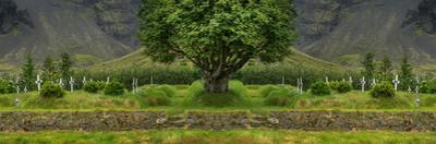 Digital composite of graveyard, Hofskirkja, Iceland