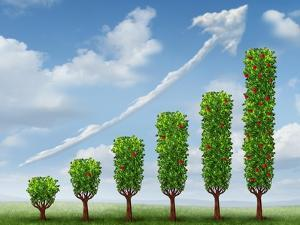 Growing Business Success by digitalista