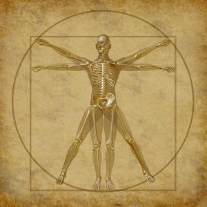 Vitruvian Human Diagram Grunge Medical Chart by digitalista