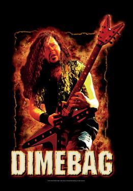 Dimebag Darrel - Fire