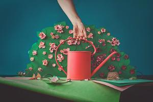 Paper Garden by Dina Belenko