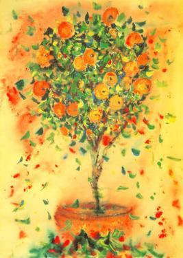 Orange Tree by Dina Cuthbertson